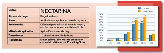 Nectarina-Tranformer-Nufarm